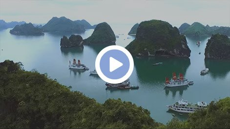 Why choose Halong Bay Tours